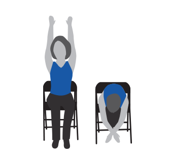 Strength Training - Shoulder Flexion